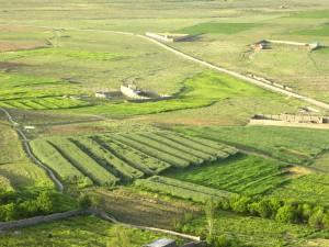 landscape-78228